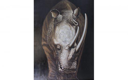 Cuadro de rinoceronte